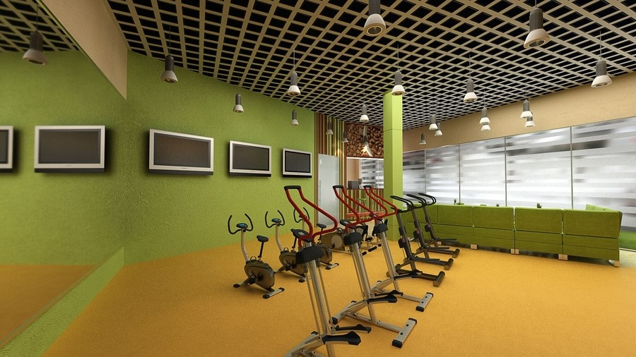 A Fitness Entertainment System Changes the Exercise Game